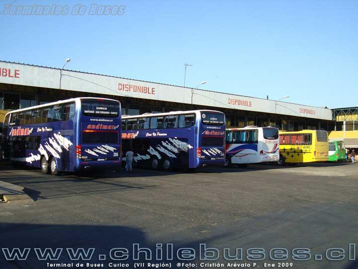 Terminal Curicó - 3