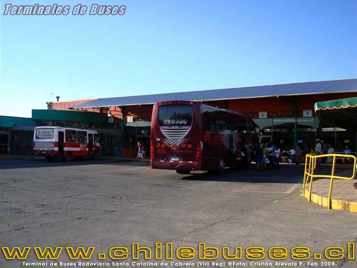 Terminal Mulchén - 1