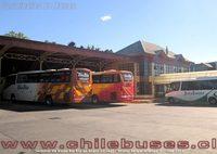 Terminal Buses Bio Bio Angol - 1 thumb