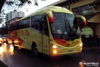 buses-biobio-3 thumb