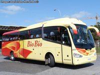 Buses-Bio-Bio-4 thumb