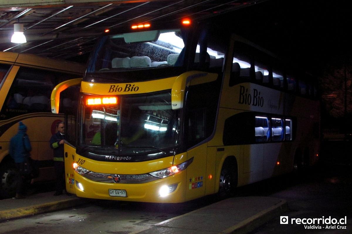 buses-biobio-4