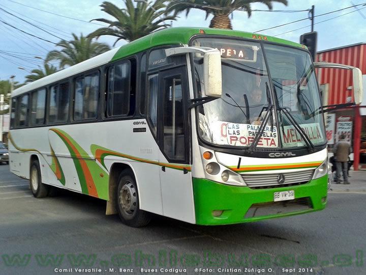 buses-codigua-3