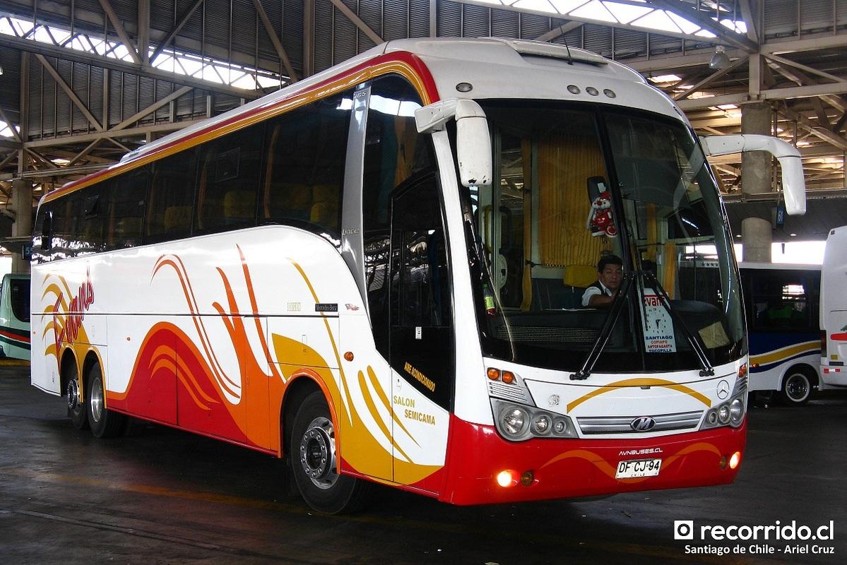 buses-evans-2