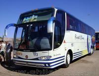 buses-geminis-3 thumb