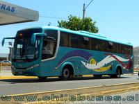 buses-ggo-4 thumb