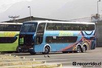 buses-horizonte-1 thumb
