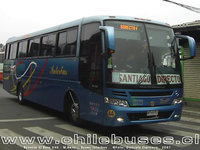 buses-interbus-2 thumb