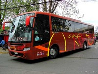 buses-interbus-4 thumb