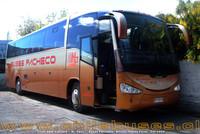 buses-pacheco-4 thumb