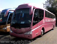 buses-pacheco-5 thumb