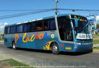 buses-palacios-2 thumb