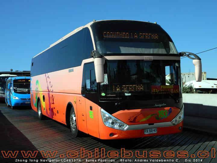 Buses Paravias - 2