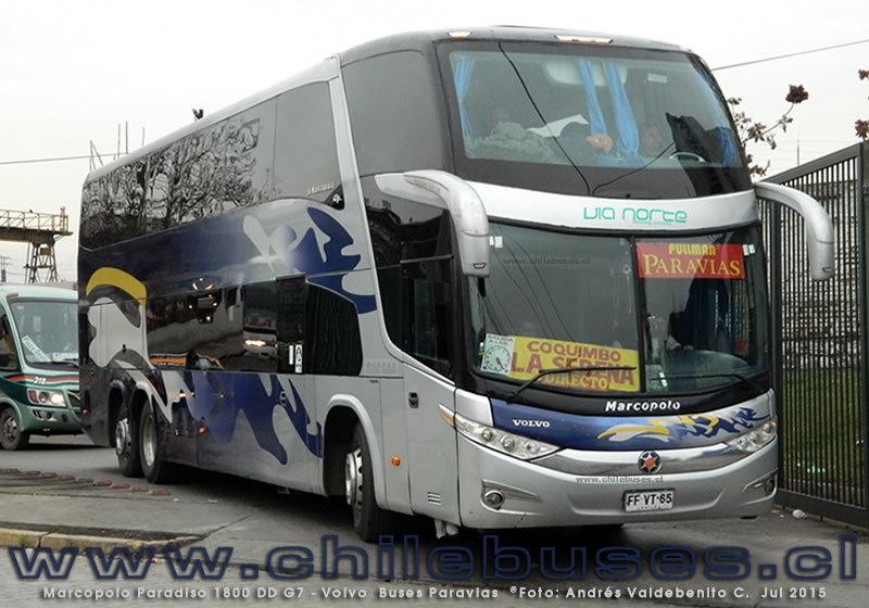 Buses Paravias - 3