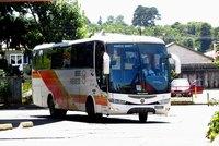 Buses Pirehueico thumb