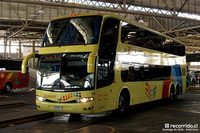 Buses-Romani-2 thumb