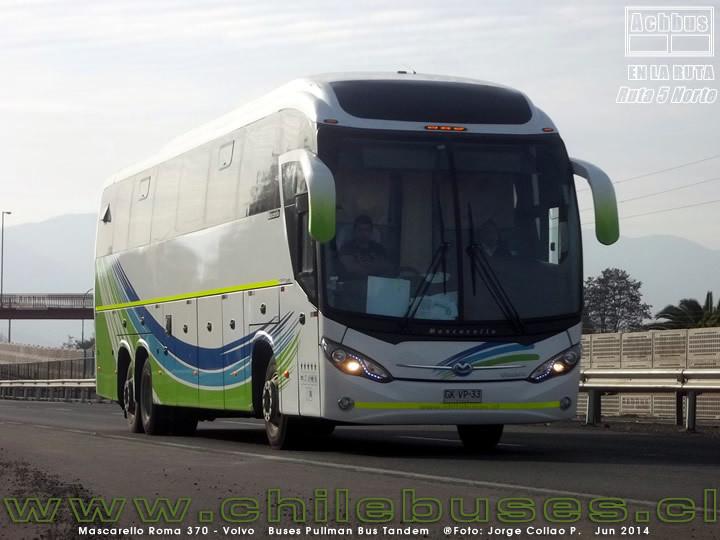 Buses Ruta 5 - 1