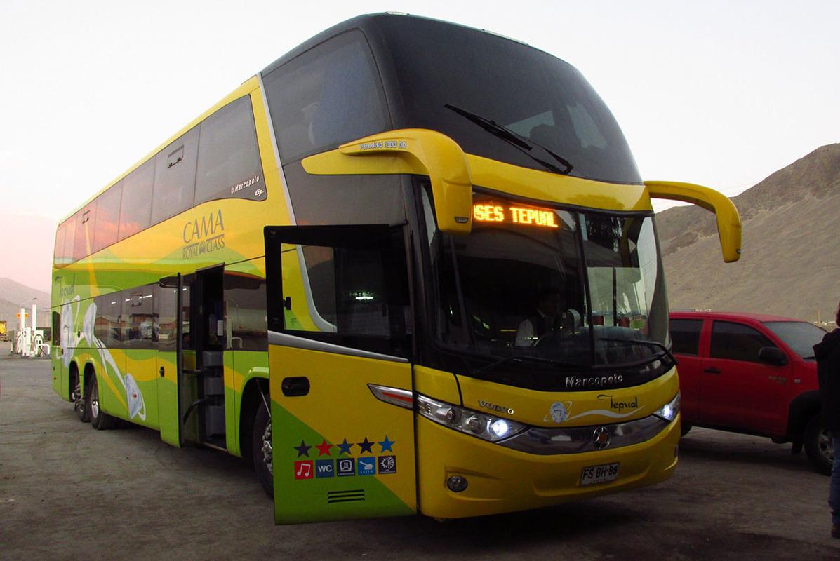 Buses Tepual - 1