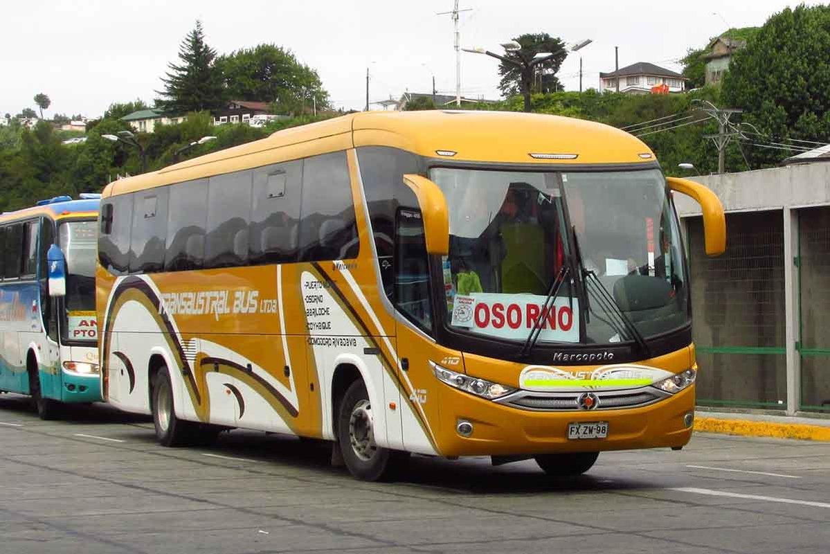 Transaustral Bus - 1