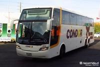 condor bus 1 thumb