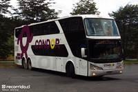 Condor Bus - 7 thumb
