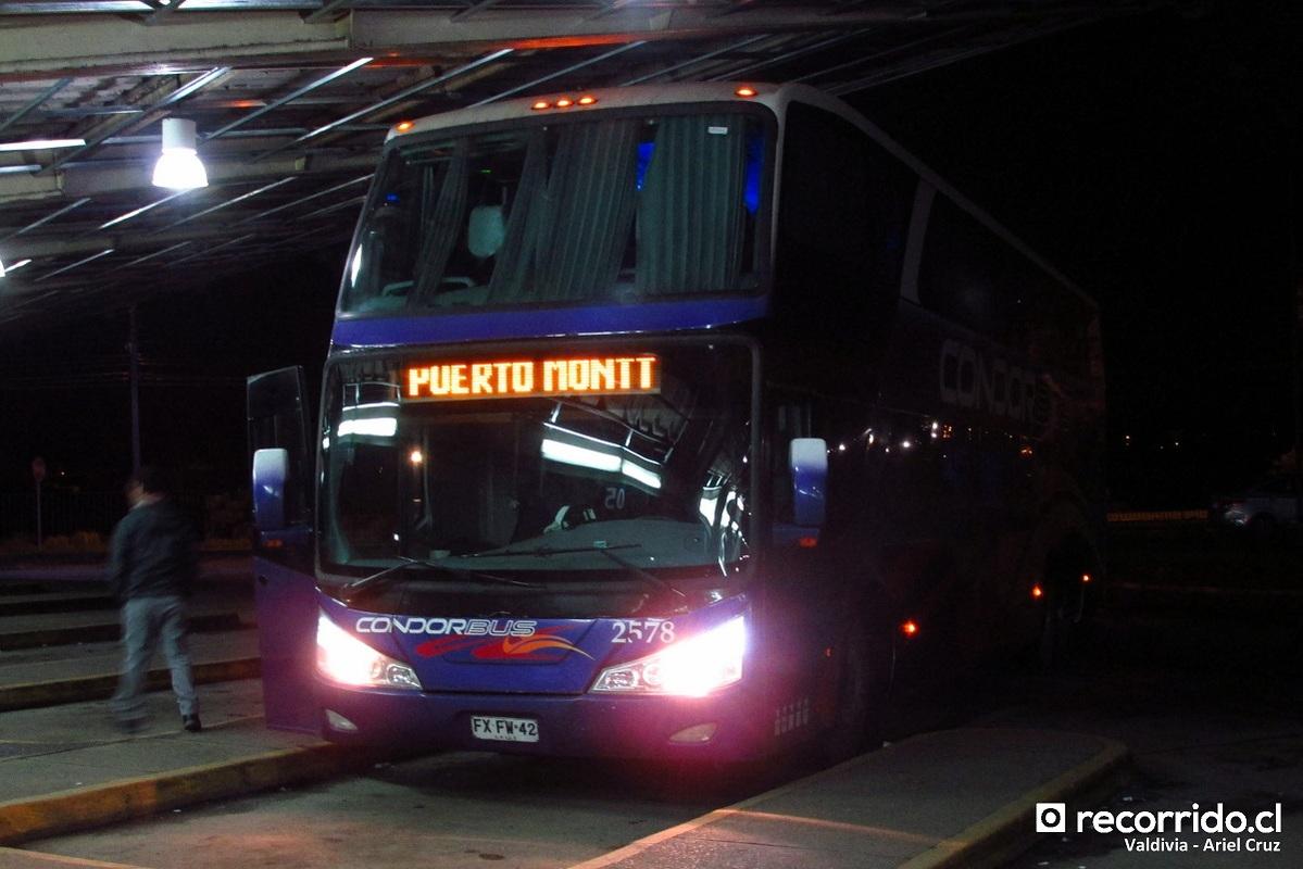 condor bus 3