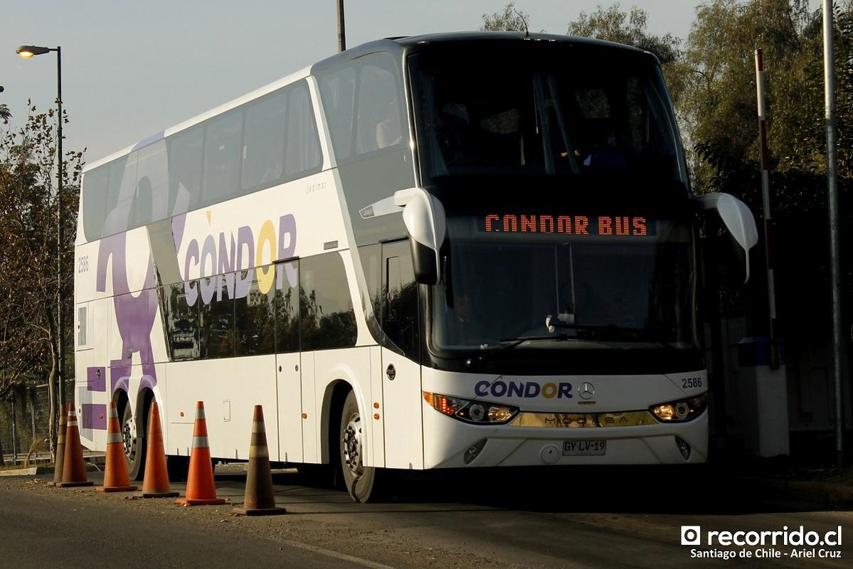 condor bus 4
