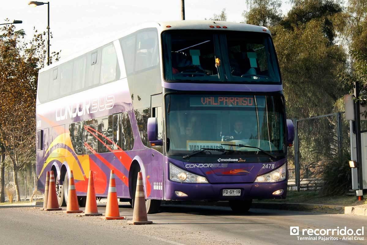 Condor Bus - 6