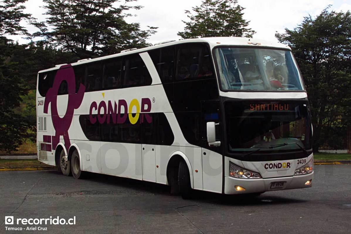 Condor Bus - 7