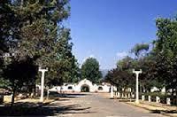 Panimavida 1