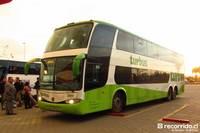 Tur Bus - 7 thumb