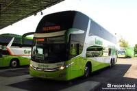 Tur Bus - 10 thumb