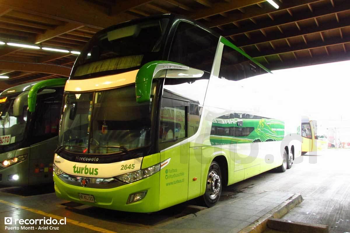 Tur Bus - 9