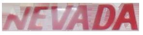 Buses Nevada Internacional logo