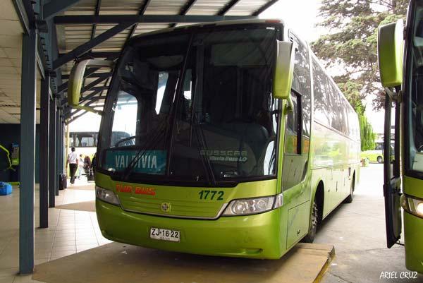 Terminal Tur Bus de Rancagua - 1