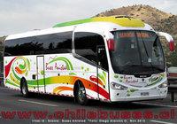 buses-amistad-5 thumb