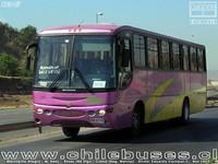 buses-colina-1 thumb
