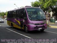 buses-colina-2 thumb