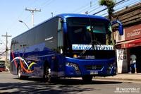 buses-diaz-1 thumb