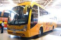 Buses Golondrina - 2 thumb