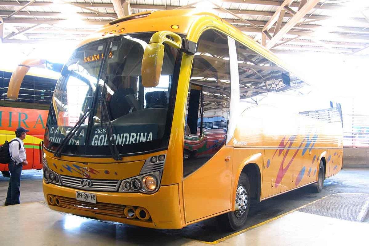 Buses Golondrina - 2