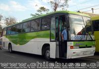 buses-jimenez-3 thumb