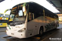 buses-nilahue-1 thumb