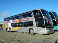buses-pacheco-2 thumb