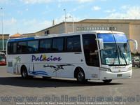 buses-palacios-1 thumb