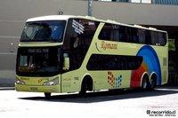 Buses-Romani-5 thumb