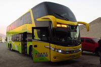 Buses Tepual - 1 thumb