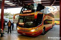buses-cruz-del-sur-2 thumb