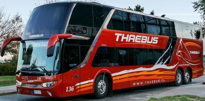 Thaebus-3