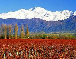 Mendoza 4